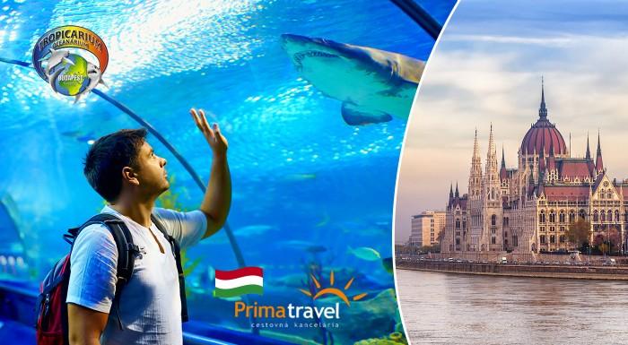Fotka zľavy: Objavte maďarské hlavné mesto a jeho Tropikárium na jednodňovom zájazde s CK Prima Travel len za 18,90 €. V cene doprava klimatizovaným autobusom aj prehliadka mesta so sprievodcom.