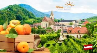 Zľava 32%: Spoznajte nádherné rakúske údolie Wachau zaradené do zoznamu UNESCO a zažite jedinečné marhuľové slávnosti s množstvom špecialít - jednodňový zájazd s dopravou autobusom a sprievodcom!