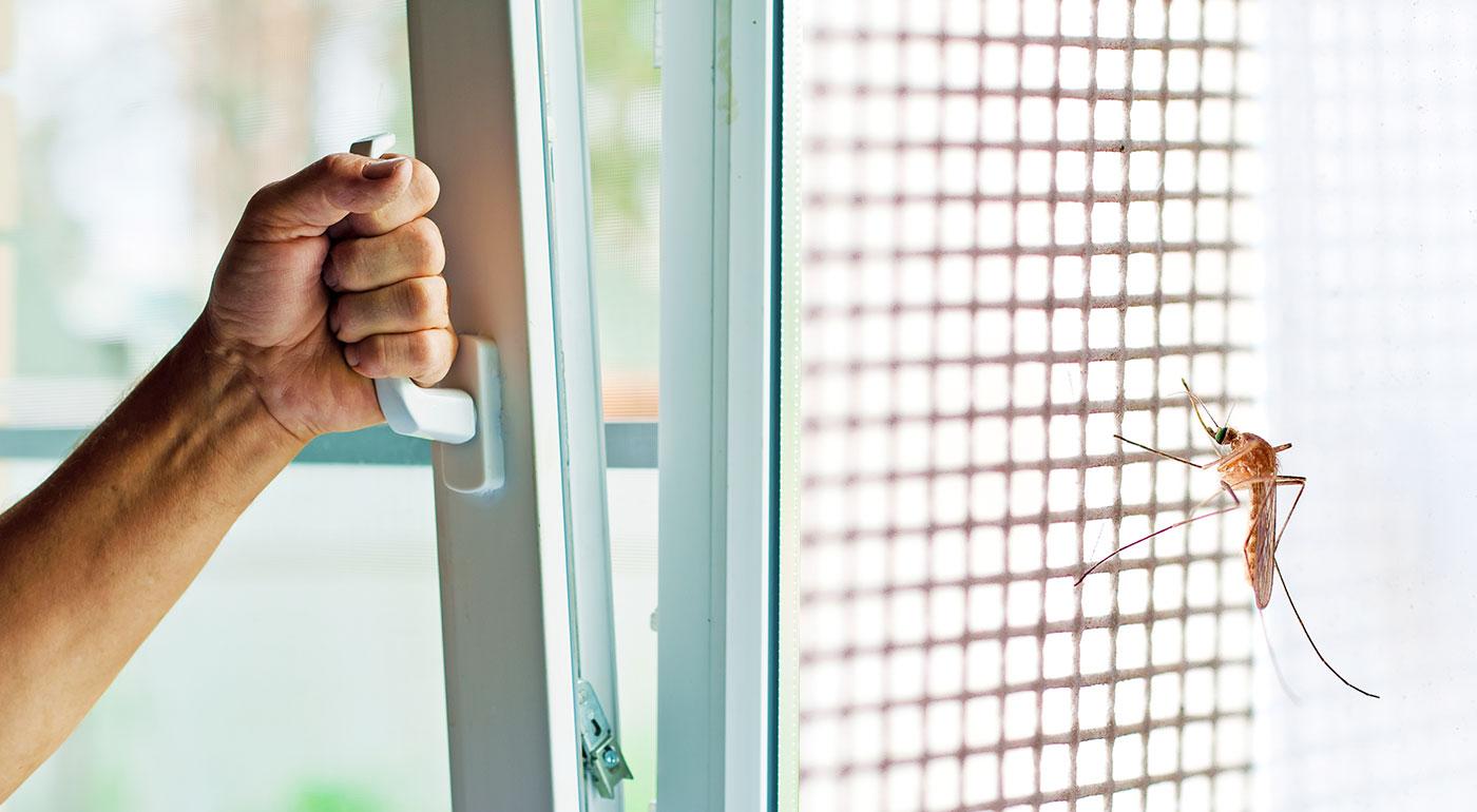 Sieťka na okná proti hmyzu so samolepiacim suchým zipsom