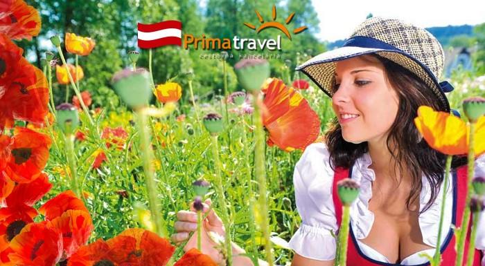Fotka zľavy: Deň plný zábavy v Rakúsku! Makové slávnosti v dedinke Armschlag plné makových stánkov, jedla, ľudových tancov a očarujúci svet drahých kameňov vo Svete ametystov len za 24,90 € s CK Prima Travel.