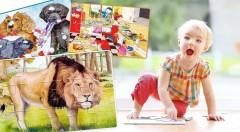 Zľava 49%: Darujte svojim deťom úsmev na tvári vďaka náučným dreveným puzzle už od 3,50 €. Na výber zo 7 krásnych motívov.