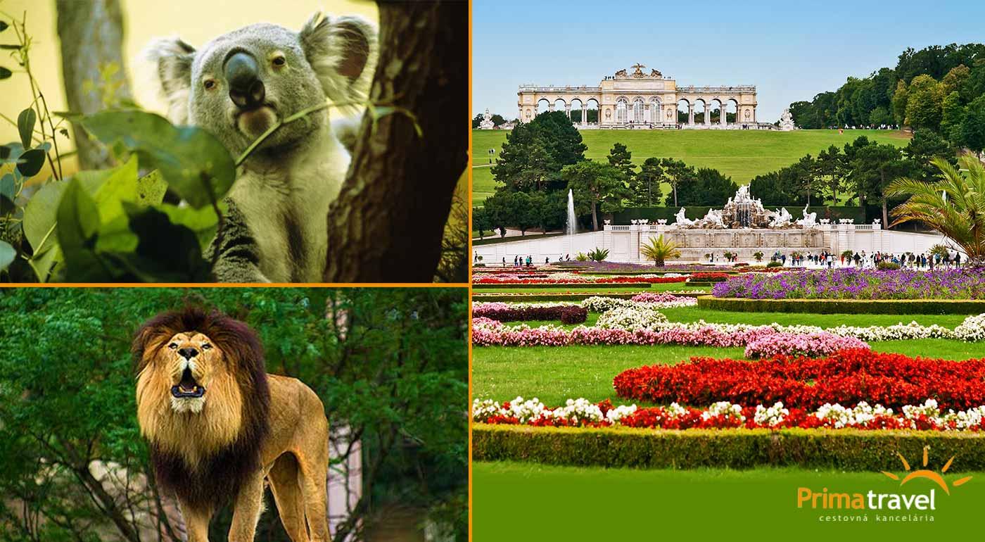 Spoznajte hlavné mesto Rakúska, viedenskú ZOO, zámok Schönbrunn a jeho krásne záhrady