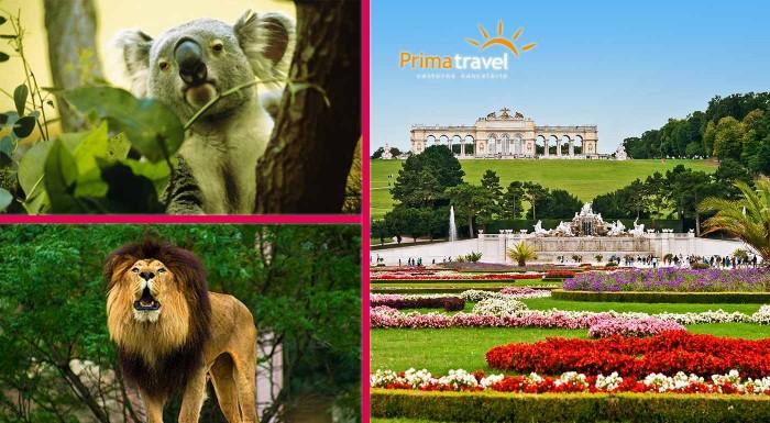 Fotka zľavy: Navštívte klenot Rakúska. Hlavné mesto Viedeň má čo ponúknuť v každom období. Pozrite si najstaršiu ZOO v Európe i zámok Schönbrunn s nádhernými francúzskymi záhradami.