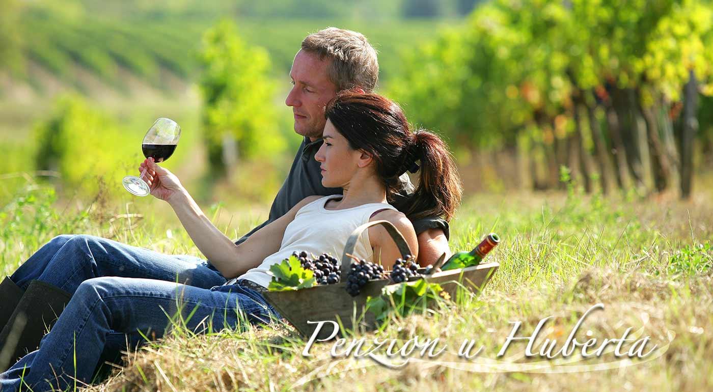 Pobyt v Znojme v Penzióne U Huberta s polpenziou a fľašou vína pre dvojicu či celú rodinu