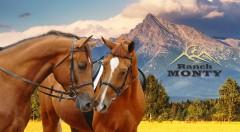 Zľava 58%: Urobte si voľno a vyberte sa do Tatier. V Penzióne Monty Ranch sa budete môcť tešiť z polpenzie či jazdy na koni.