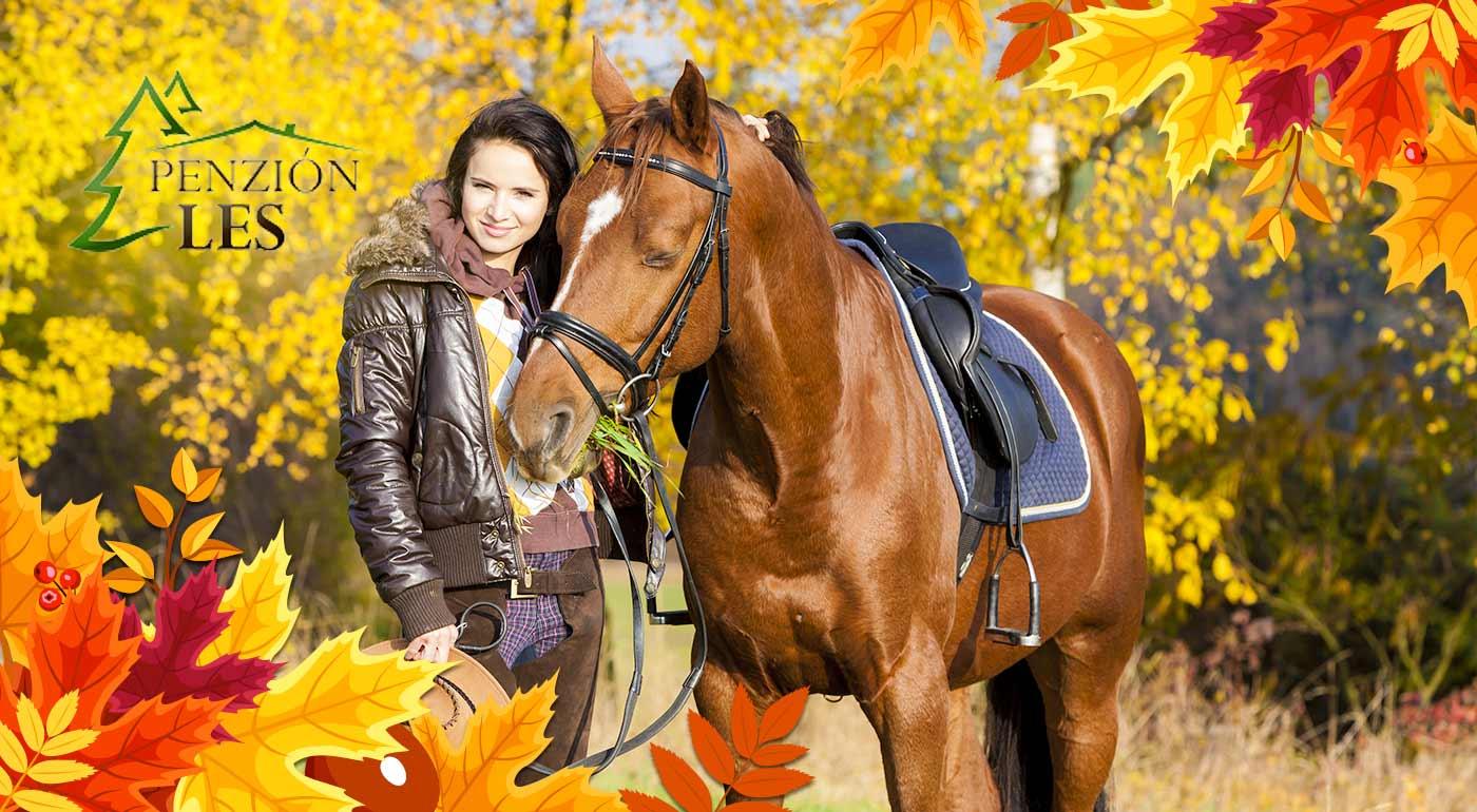 Obdivujte prírodu Kysúc z konského chrbta - prijmite pozvanie na 3 či 4 dni v penzióne Les na Kysuciach s wellness! Pozvaný je i váš psík!