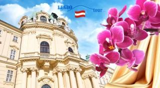 Zľava 50%: Zažite najväčšiu výstavu orchideí v Rakúsku iba 15 kilometrov od Viedne. Tisíce krehkých kvietkov vás nadchnú a rozšíria vám obzory. Okrem výstavy si pozriete aj monumentálny kláštor Klosterneuburg.
