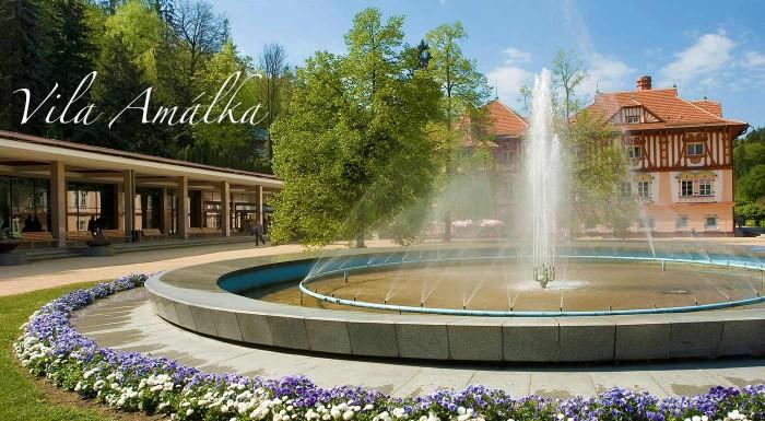 Fotka zľavy: Zrelaxujte v Luhačovických kúpeľoch - urobte si výlet na Moravu a zabývajte sa na 3 dni v pohodlných apartmánoch Vily Amálka. Čakájú vás výborné večere, fľaša vína a privátny wellness!