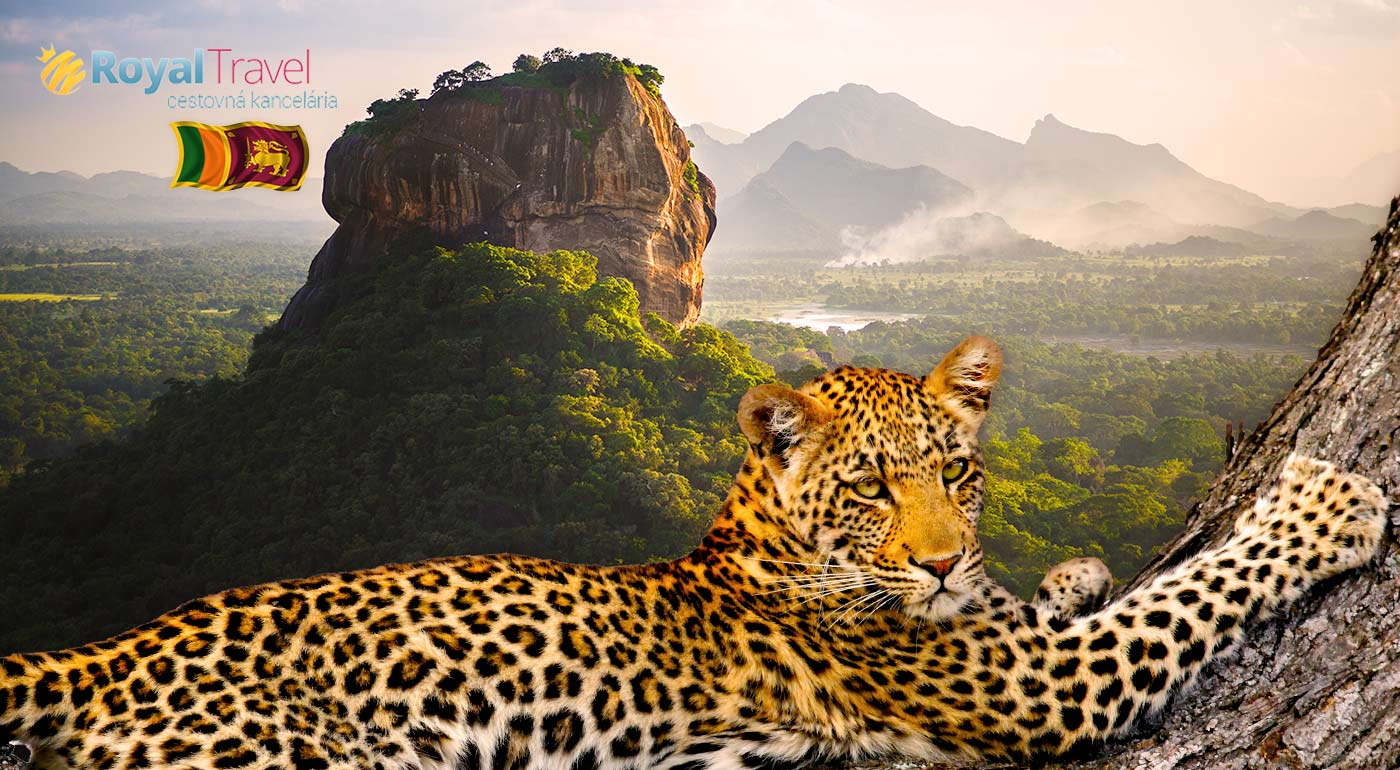 Spoznajte perlu Indického oceánu počas 11 dní! Exotická Srí Lanka s CK Royal Travel! Odlet z Bratislavy, ubytovanie pri pláži, polpenzia a ďalšie skvelé zážitky!
