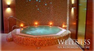 Zľava 24%: Kráľovstvo za koňa! Príďte si oddýchnuť do výnimočnej prírody Slovenského krasu a užite si wellness, masáže i skvelú polpenziu v penzióne Konský Dvor.