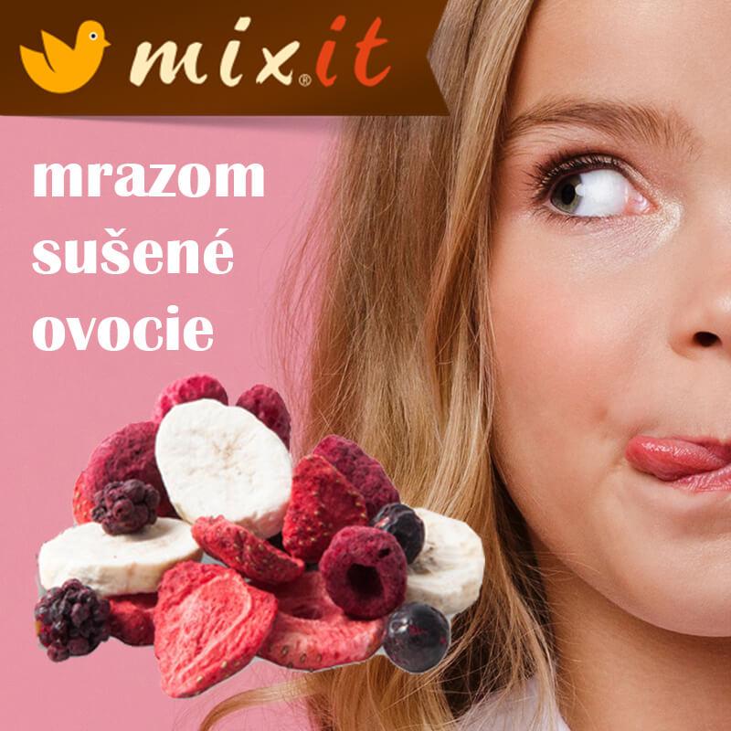 Mrazom sušené ovocie MIXIT alebo ako doplniť energiu zdravo
