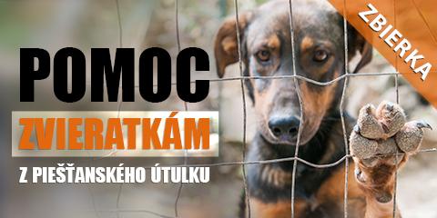 Pomoc pre psíkov v útulku