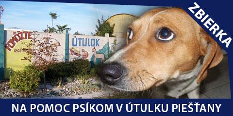 Pomôžte nám vyzbierať 1000 € pre psíkov